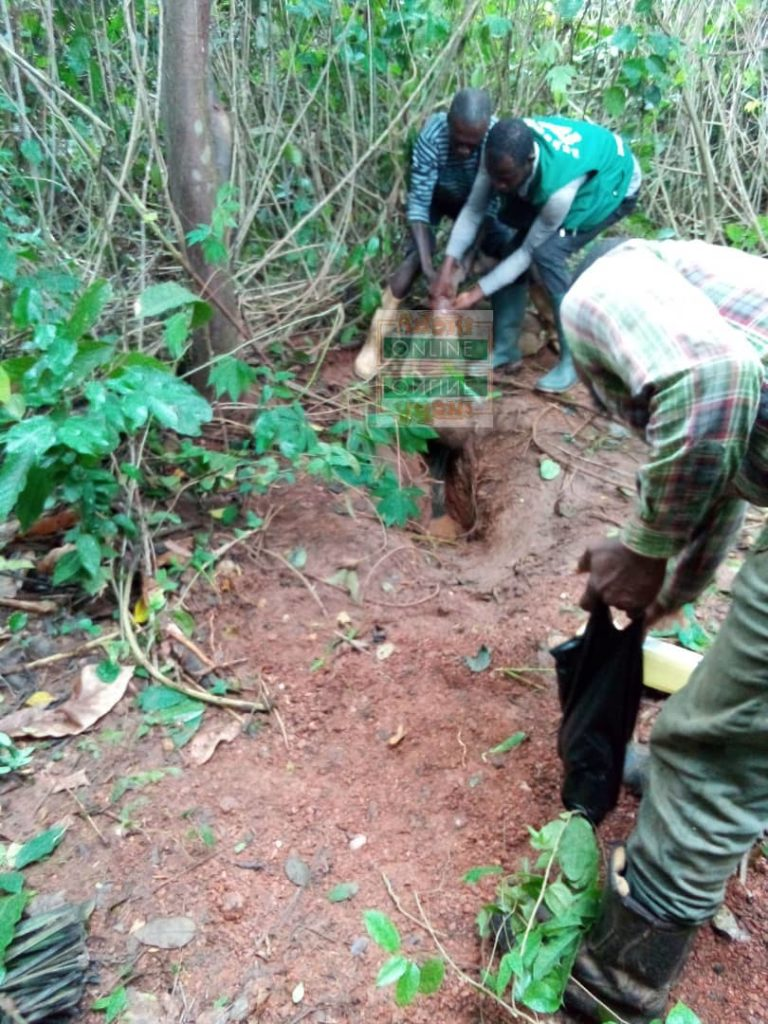 Man who went missing found dead with hand in rat hole [Video+Photos]