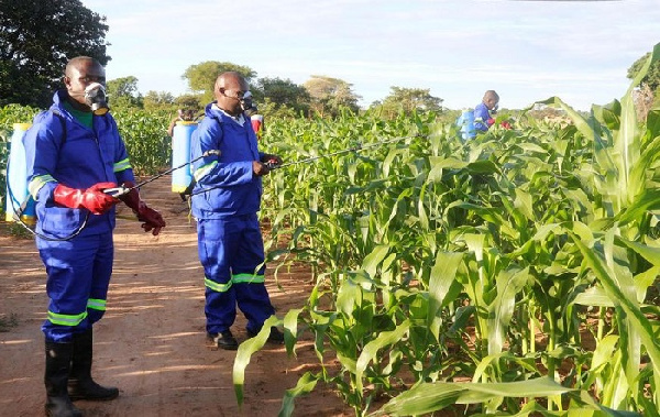 11th pre-harvest set to improve market channels for agri-foods beyond the pandemic