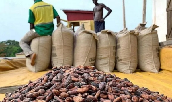 We will clamp down on heightened crime in cocoa-growing communities
