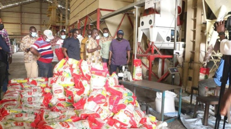 Gov't To Boost Rice Production Soon
