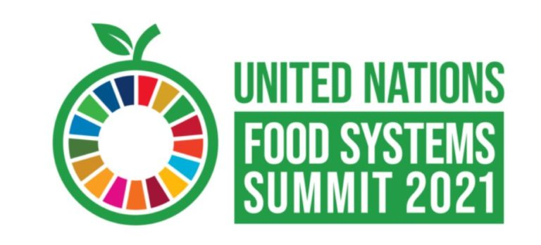Ghana to participate in UN Food Systems summit in New York