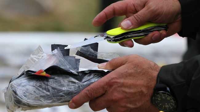 Belgium, Netherlands major cocaine hubs: Europol