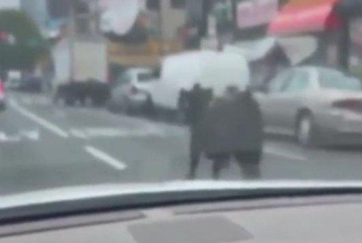 Watch: Loose cow runs on busy Philadelphia street